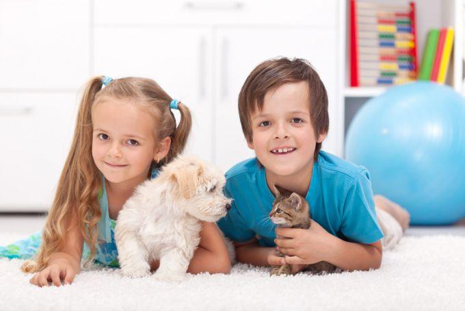 Що робити, якщо дитина принесла в будинок бездомну тварину: 6 порад ветлікаря