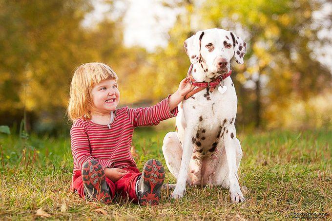 5 порід собак для сімей з маленькими дітьми