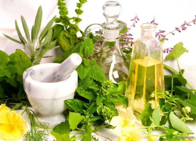 9 трав і рослин, які протипоказані вагітним