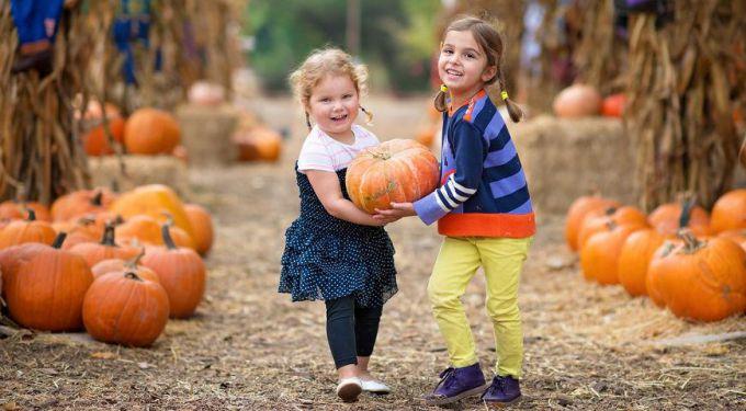 Яка користь гарбузу для дітей?