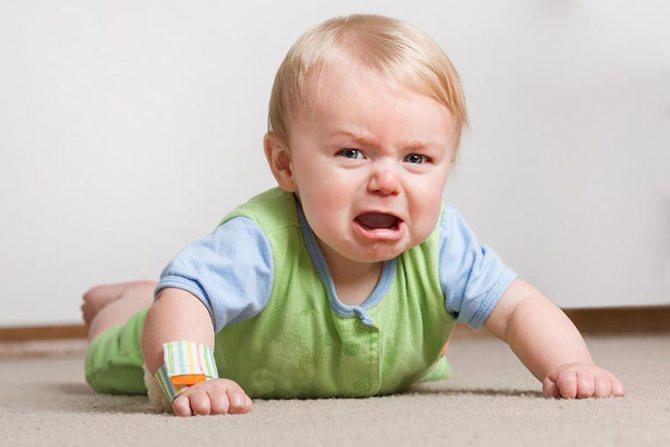 Вчені: Характер у дітей формують бактерії в кишечнику