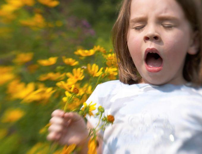 allergia.jpg (38.91 Kb)