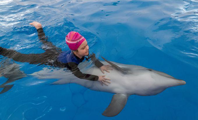 Дельфінотерапія: як лікувати дітей за допомогою дельфінів