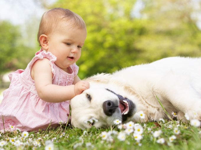 little-beautiful-girl-with-dog_1600x1200.jpg (52. Kb)