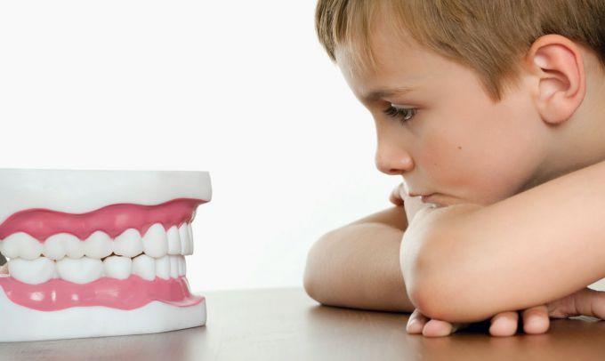 Дитячий стоматолог: міфи про зуби, молочні і постійні
